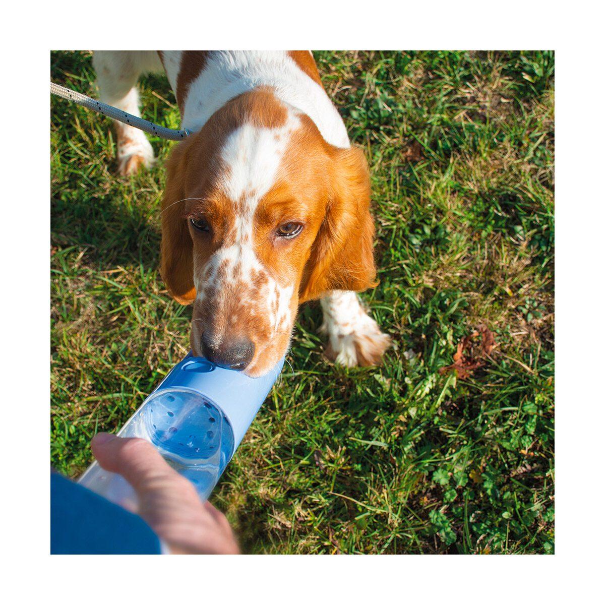 Drinkfles voor honden voor onderweg