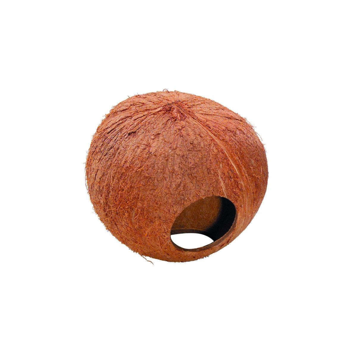 Kokosnoot Knaagdierenhuis 130 mm - in Rennen