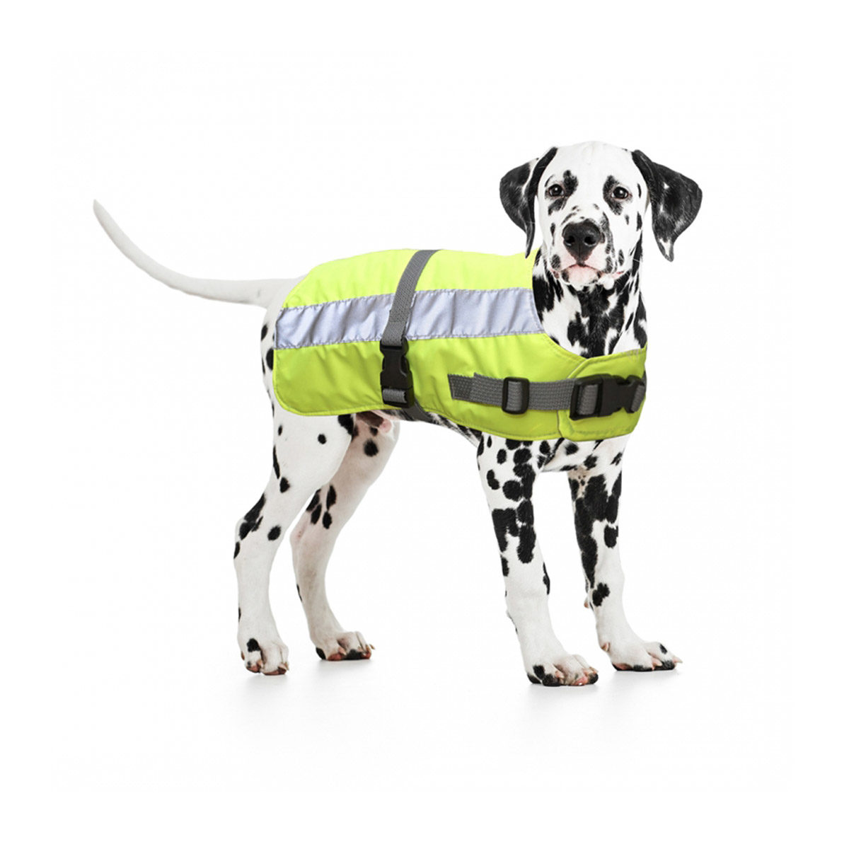 Duvo+ Flectalon Hi Vis Honden Jack Ruglengte 65 cm Geel - in Reflectie & Verlichting