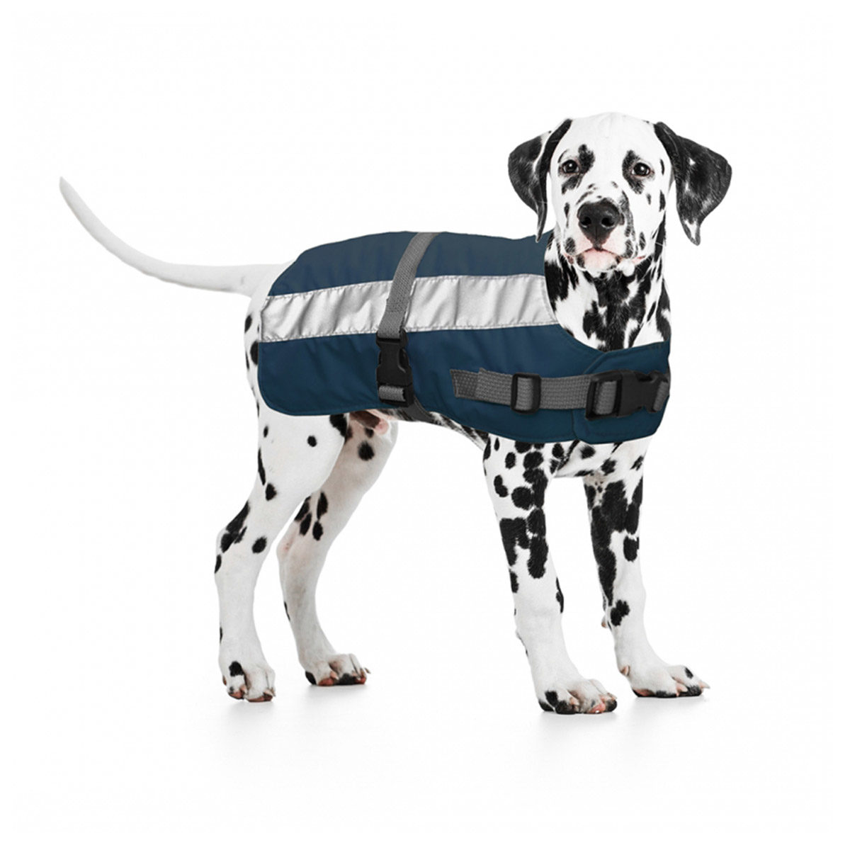 Duvo+ Flectalon Hi Vis Honden Jack Ruglengte 75 cm Blauw - in Reflectie & Verlichting